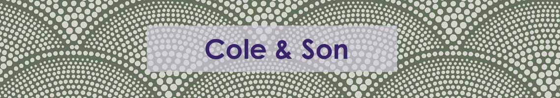cole-and-son-banner